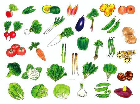 Vegetable summary