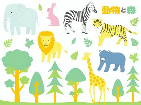 Animals and Forests