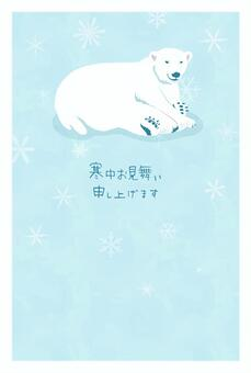 Visiting in the cold (polar bear)