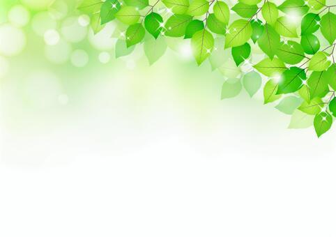 新的绿色材料236