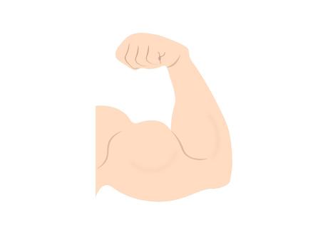痛 頭 筋肉 二 上腕 筋