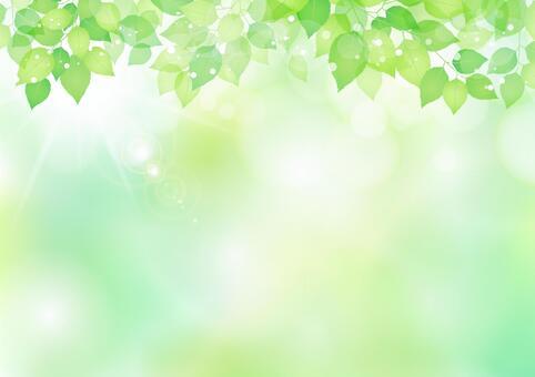 新的绿色材料225