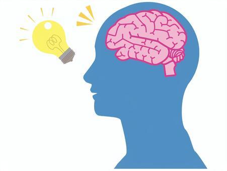 脳みそイラスト/無料イラストなら「イラストAC」