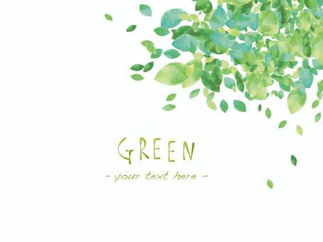 新的绿色框架ver 04