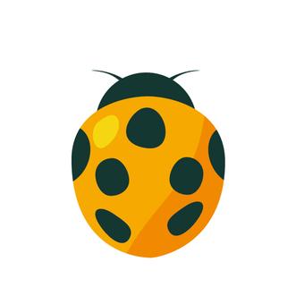 瓢虫 - 黄色