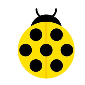 瓢虫(黄色)