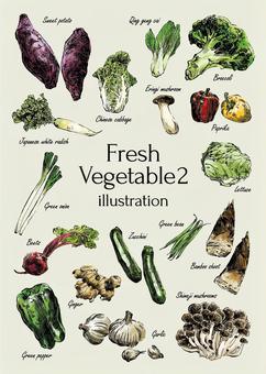 Fresh vegetable illustration 2
