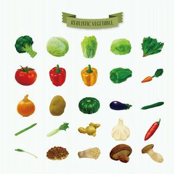 Illustration of real vegetables