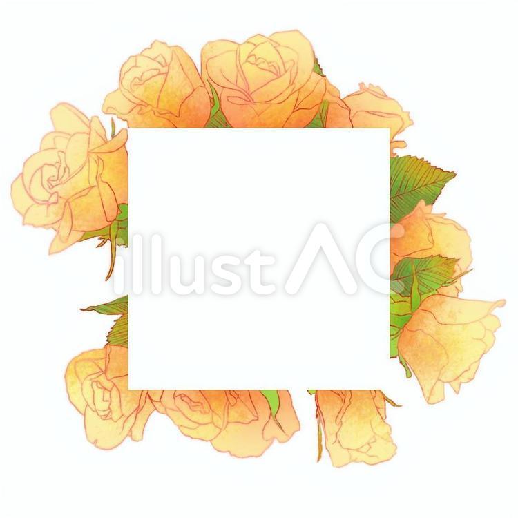 黄色い薔薇の花のフレーム