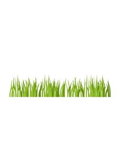 草坪(黄绿色)