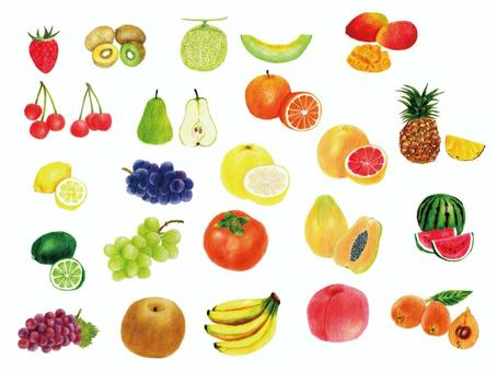 Fruit summary (color pencil drawing)