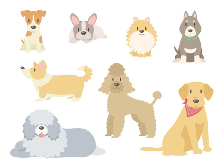 Various dogs _ 02