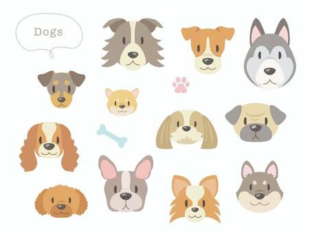 Dog's face _ Dog breeds various _ 02