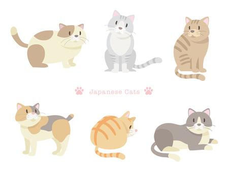 Various cats _ 04 _ Japan cat