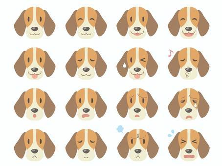 Dog's face _ various facial expressions