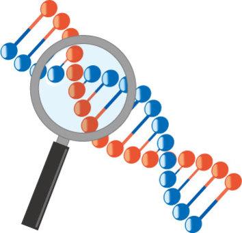 遺伝子イラスト/無料イラストなら「イラストAC」