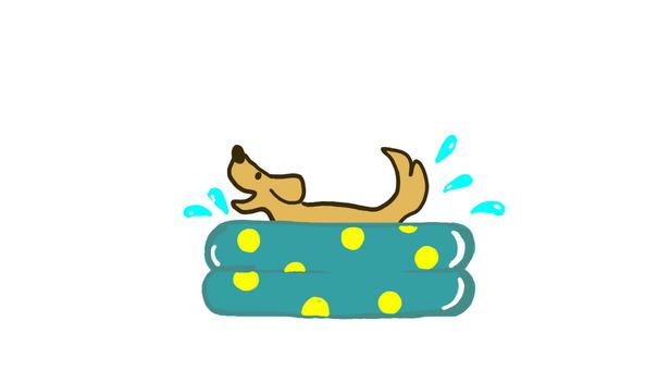 犬の水浴び