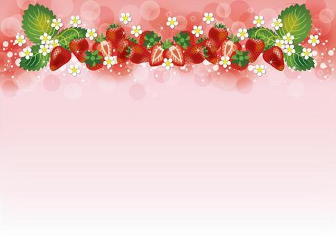 苺 Background From above