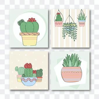 植物カードテンプレート