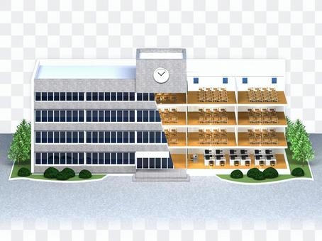 School (school building) sectional view 1