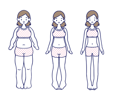 Female body Various body types Diet