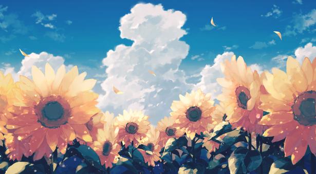 向日葵和積雨雲