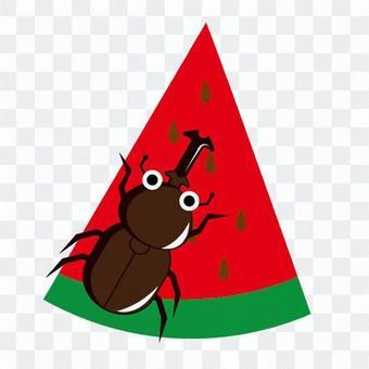 수박과 딱정벌레