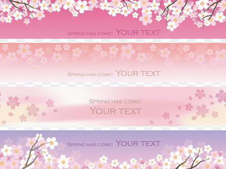 Cherry blossom background 14