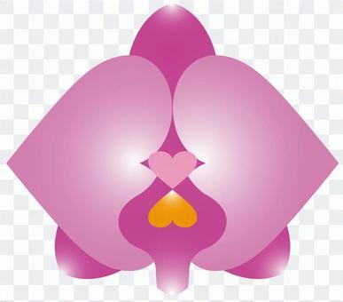 Flower 10_02