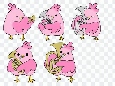 鳥類和樂器【銅管樂器】