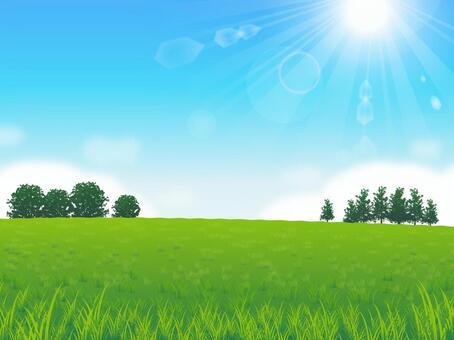 新鮮的天空和草地背景04