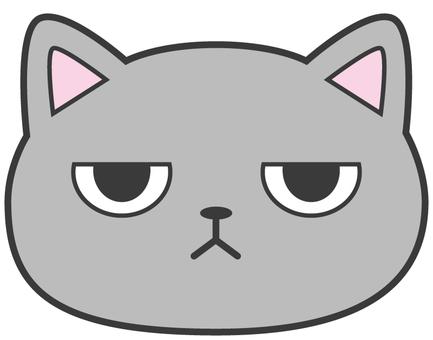 Cat_gray_jito 眼睛