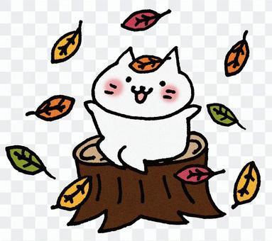 秋天的貓2