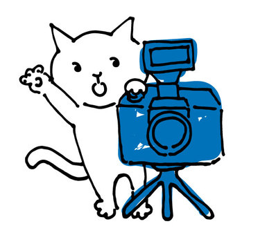 Photographer's white cat and tripod camera to shoot