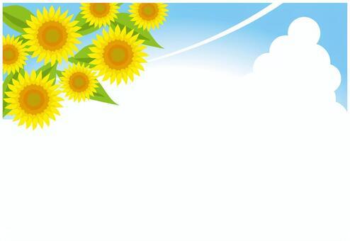 夏天的天空背景
