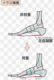 Truss mechanism