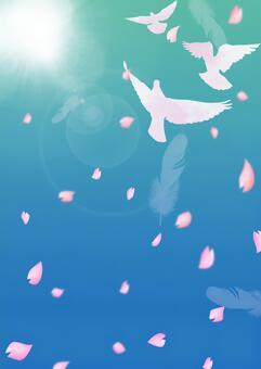 비둘기가 날고 푸른 하늘 벚꽃 5