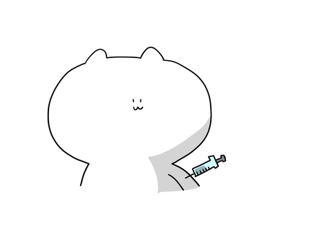 Cat staring at the syringe