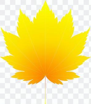 aiオレンジ色のカエデ7・1点