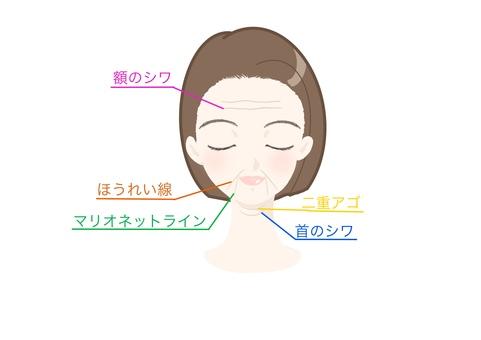 成年女孩_皮膚問題_皮膚年齡2