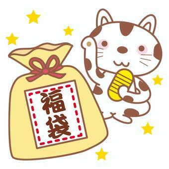 幸運袋和貓