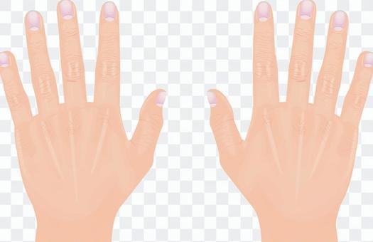 手シリーズ リアル 両手 手の甲