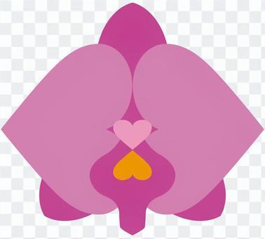Flower 10_01