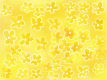 強姦花卉壁紙