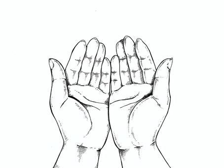 Hand line drawing Illustration - Wrap -