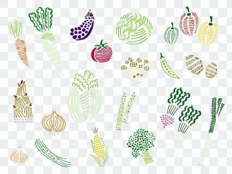各種蔬菜的插圖集/手繪