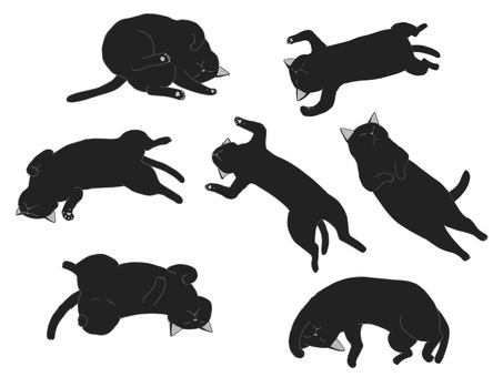 黑貓睡在天堂