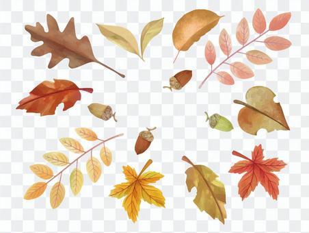 秋のボタニカルリーフ コレクション 2