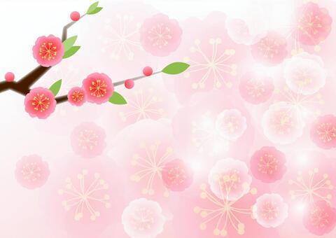 Peach blossom background