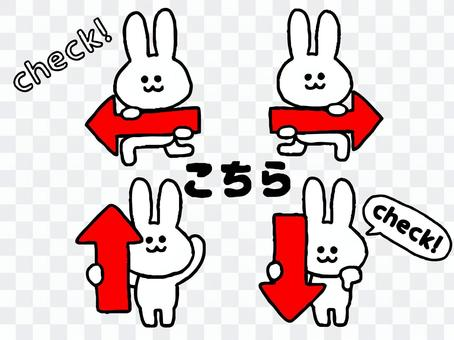 箭兔套裝(動物簡單)